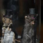 Roddy and Reggie the Ripper Mice